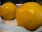 Freshly Blanched Meyer Lemons - The Peel Was Increbily Soft