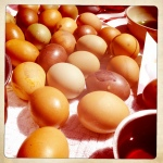 Yay!!!  The eggs dyed!!!