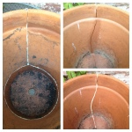 Once dried - Left: Medium pot does not need more glue.  Right: I ran more glue along the inside of the large pot's crack.