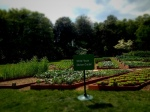 Beautiful White House Kitchen Garden