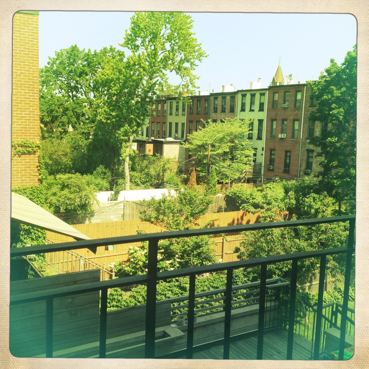 Brooklyn back yards